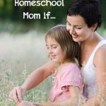You Might Be a Homeschool Mom If...