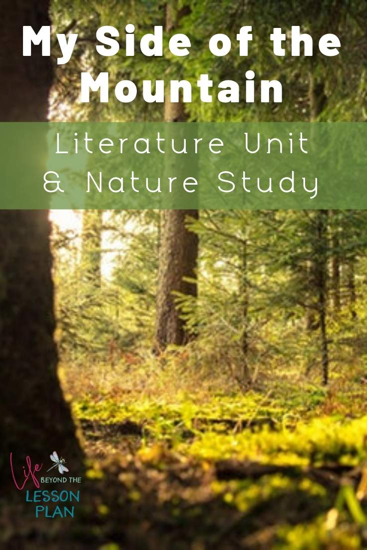 My Side of the Mountain Literature Unit and Nature Study