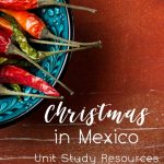 Christmas in Mexico Unit Study Resources