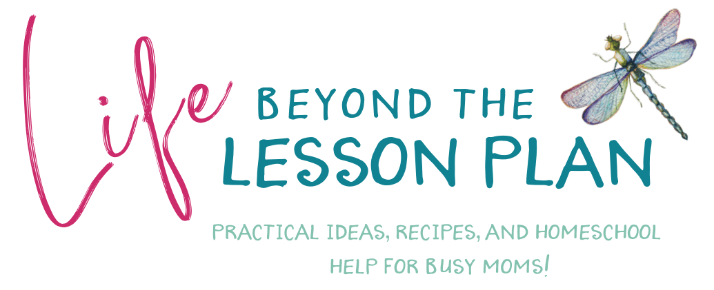 Life Beyond the Lesson Plan