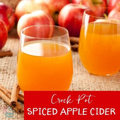 Crock Pot Spiced Apple Cider