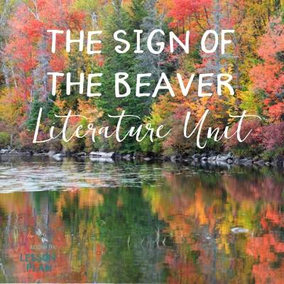 Sign of the Beaver Literature Unit