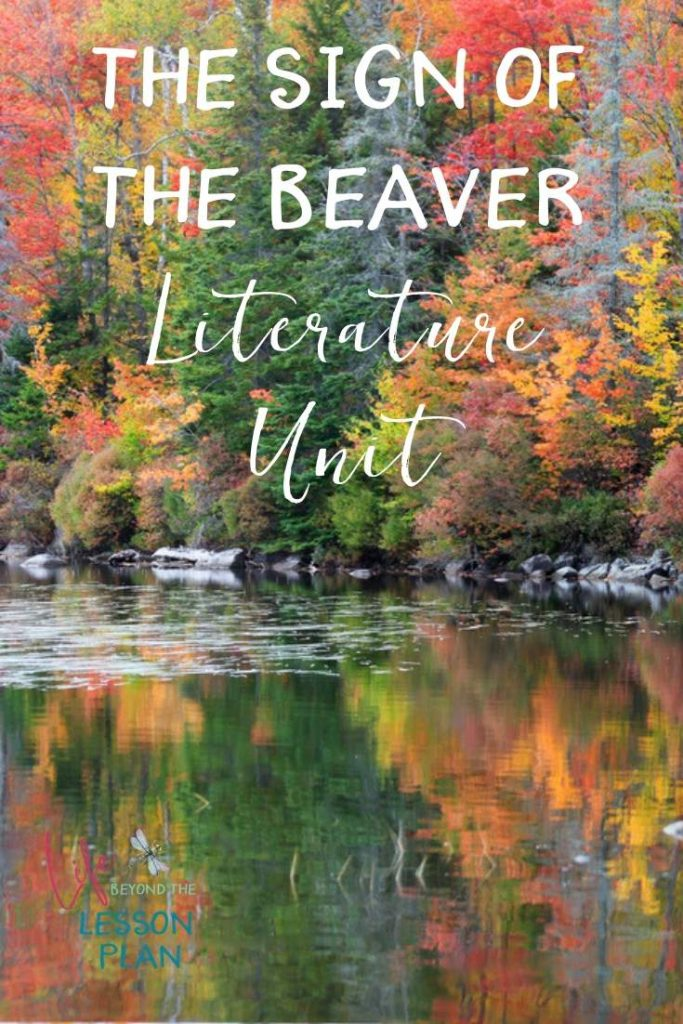 The Sign of the Beaver Literature Unit
