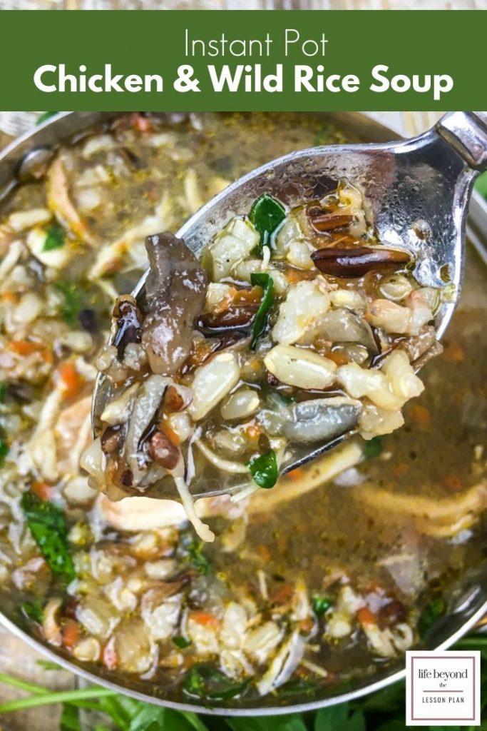 Instant Pot Wild Rice and Chicken Sop