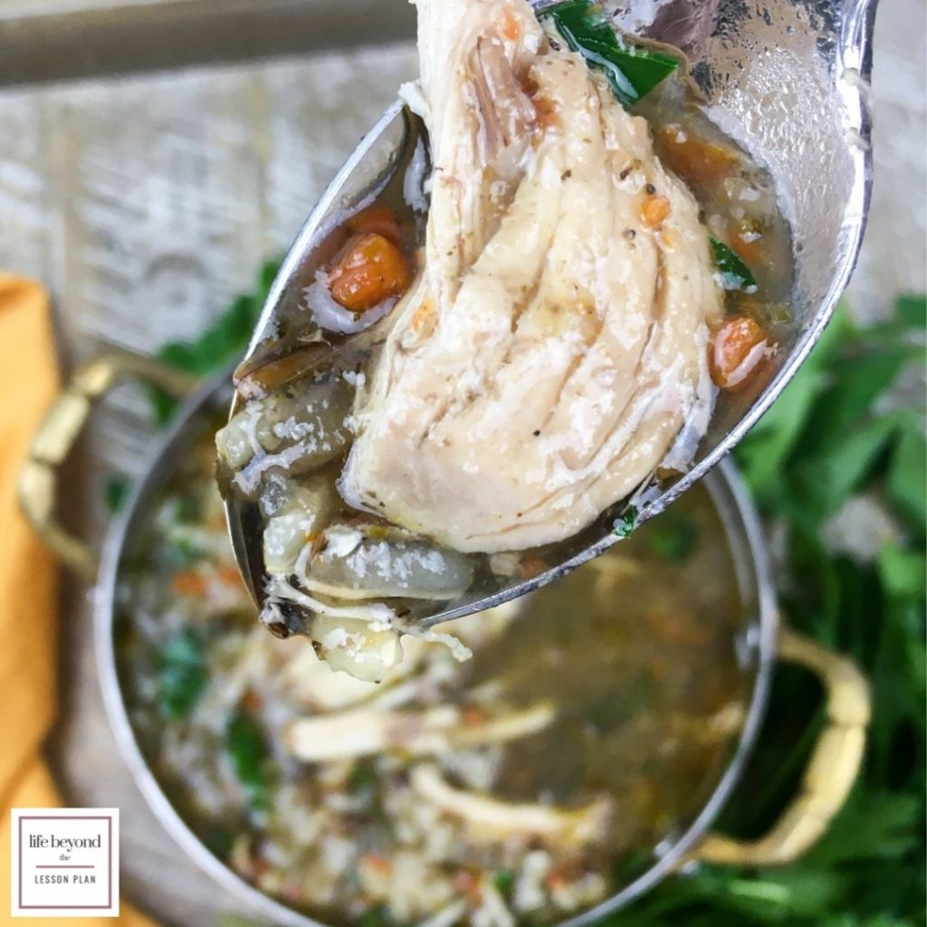 Instant Pot Wild Rice and Chicken Soup